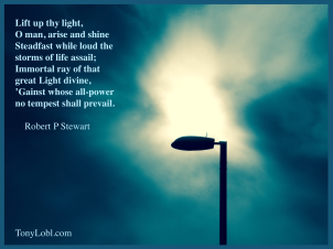 """""""Lamp in the darkness"""" by Tony Lobl"""