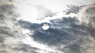"""Sun shines through"" by Tony Lobl-web"